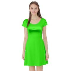 Plain Green Short Sleeve Skater Dress