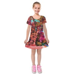 Abstract Fall Trees Saturated With Orange Pink And Turquoise Kids  Short Sleeve Velvet Dress by Nexatart