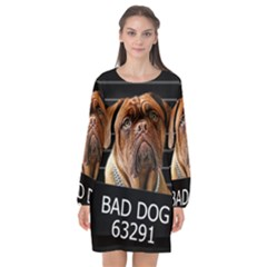 Bed Dog Long Sleeve Chiffon Shift Dress  by Valentinaart