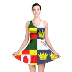 Arms Of Four Provinces Of Ireland  Reversible Skater Dress by abbeyz71