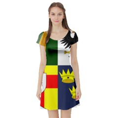 Arms Of Four Provinces Of Ireland  Short Sleeve Skater Dress by abbeyz71