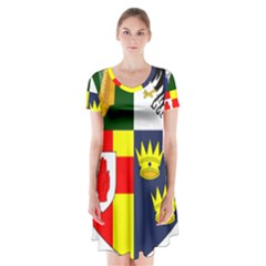 Arms Of Four Provinces Of Ireland  Short Sleeve V Neck Flare Dress by abbeyz71