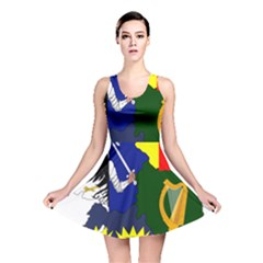 Flag Map Of Provinces Of Ireland  Reversible Skater Dress by abbeyz71