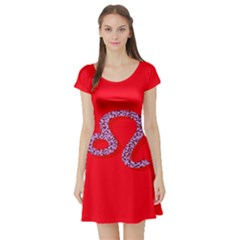 Illustrated Zodiac Red Purple Star Polka Dot Short Sleeve Skater Dress by Mariart