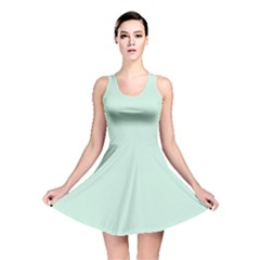 Pastel Color   Light Greenish Gray Reversible Skater Dress by tarastyle