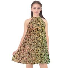 Crystals Rainbow Halter Neckline Chiffon Dress  by Mariart