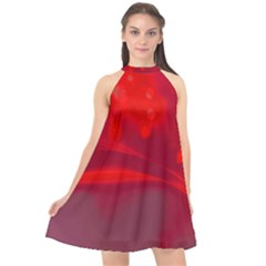 Lights Halter Neckline Chiffon Dress  by ValentinaDesign