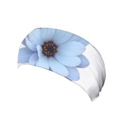 Daisy Flower Floral Plant Summer Yoga Headband by Nexatart
