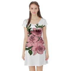 Orchid Short Sleeve Skater Dress by Valentinaart
