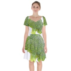 Broccoli Bunch Floret Fresh Food Short Sleeve Bardot Dress by Nexatart