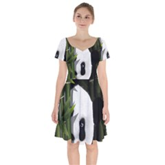 Panda Short Sleeve Bardot Dress by Valentinaart