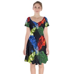 Perfect Amoled Screens Fire Water Leaf Sun Short Sleeve Bardot Dress