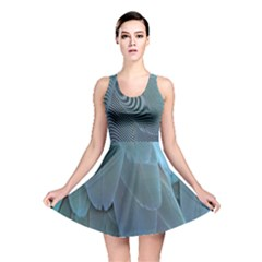 Feather Plumage Blue Parrot Reversible Skater Dress by Nexatart