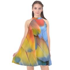 Spring Parrot Parrot Feathers Ara Halter Neckline Chiffon Dress