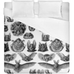 Haeckel Chiroptera Duvet Cover (King Size)