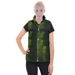 Beautiful Fractal Pines In The Misty Spring Night Women s Button Up Puffer Vest by jayaprime