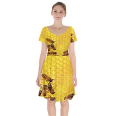 Sweden Honey Short Sleeve Bardot Dress by BangZart