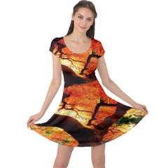 Maple Tree Nice Cap Sleeve Dresses
