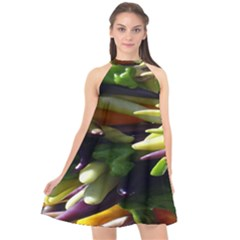 Bright Peppers Halter Neckline Chiffon Dress  by BangZart