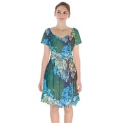 Fractal Formula Abstract Backdrop Short Sleeve Bardot Dress
