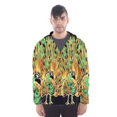 Unusual Peacock Drawn With Flame Lines Hooded Wind Breaker (men) by BangZart