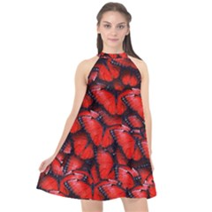 The Red Butterflies Sticking Together In The Nature Halter Neckline Chiffon Dress