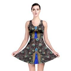 Peacock Reversible Skater Dress by BangZart