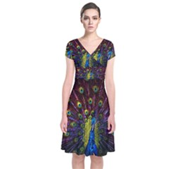 Beautiful Peacock Feather Short Sleeve Front Wrap Dress by BangZart