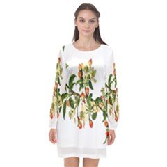 Apple Branch Deciduous Fruit Long Sleeve Chiffon Shift Dress  by Nexatart