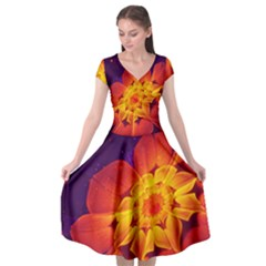 Royal Blue, Red, And Yellow Fractal Gerbera Daisy Cap Sleeve Wrap Front Dress by jayaprime