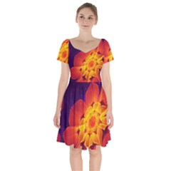 Royal Blue, Red, And Yellow Fractal Gerbera Daisy Short Sleeve Bardot Dress by jayaprime