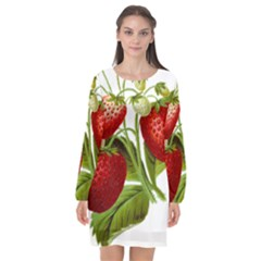 Food Fruit Leaf Leafy Leaves Long Sleeve Chiffon Shift Dress