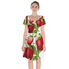 Food Fruit Leaf Leafy Leaves Short Sleeve Bardot Dress by Nexatart