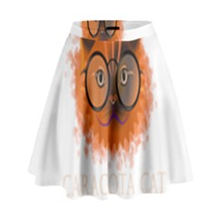 Cat Smart Design Pet Cute Animal High Waist Skirt by Nexatart