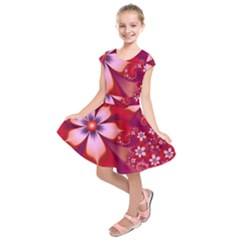 2480 Flowers Petals Red 3840x2400 Kids  Short Sleeve Dress by amphoto