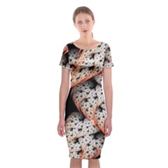 Dots Leaves Background  Classic Short Sleeve Midi Dress by amphoto