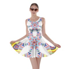 Colorful Chromatic Psychedelic Skater Dress