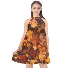 Fall Foliage Autumn Leaves October Halter Neckline Chiffon Dress  by Nexatart