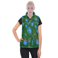 Fluorescence Microscopy Green Blue Women s Button Up Puffer Vest by Mariart