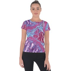Natural Stone Red Blue Space Explore Medical Illustration Alternative Short Sleeve Sports Top  by Mariart