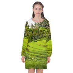 Rice Terrace Terraces Long Sleeve Chiffon Shift Dress  by Nexatart