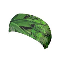 Vivid Tropical Design Yoga Headband by dflcprints