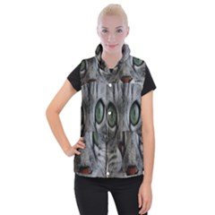 Cat Face Eyes Gray Fluffy Cute Animals Women s Button Up Puffer Vest by Mariart