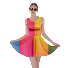Rainbow Stripes Vertical Lines Colorful Blue Pink Orange Green Skater Dress