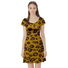 Classic Leopard Short Sleeve Skater Dress by TRENDYcouture