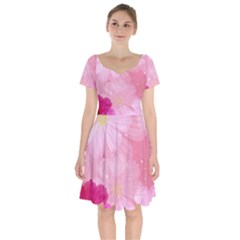 Cosmos Flower Floral Sunflower Star Pink Frame Short Sleeve Bardot Dress
