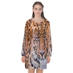 Tiger Beetle Lion Tiger Animals Leopard Long Sleeve Chiffon Shift Dress  by Mariart