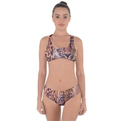 Tiger Beetle Lion Tiger Animals Leopard Criss Cross Bikini Set