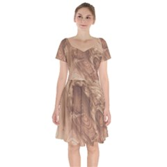 Fantastic Wood Grain 917c Short Sleeve Bardot Dress by MoreColorsinLife