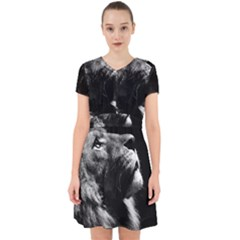 Male Lion Face Adorable In Chiffon Dress by Celenk